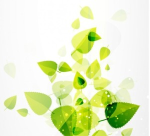 abstract-green-leaves-vector-background_53-6865